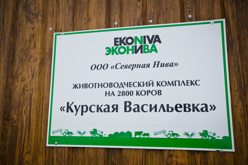 The largest dairy in Orenburg oblast is ready for operation